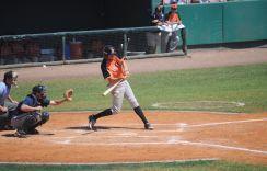 netherlands-baseball
